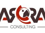 arra consulting logo - Applied OLAP